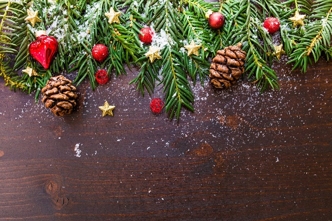 Decorated Pine falling over plank of wood